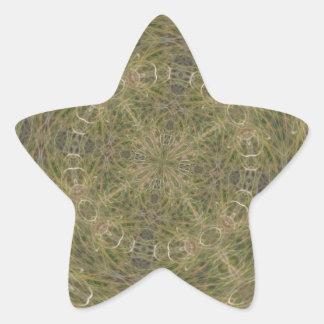 Modelo diseñado de intriga pegatina en forma de estrella