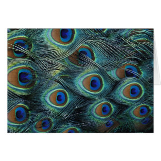 Modelo en las plumas masculinas del pavo real tarjeta de felicitación