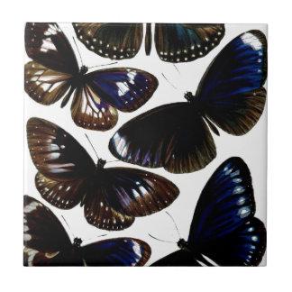 Modelo hermoso de la imagen de las mariposas del v tejas  cerámicas