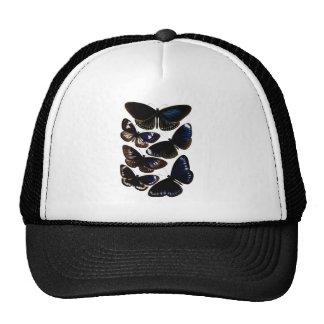 Modelo hermoso de la imagen de las mariposas del v gorros bordados