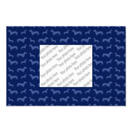 Modelo lindo del dachshund de los azules marinos impresion fotografica