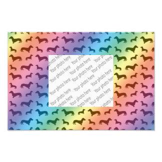 Modelo lindo del dachshund del arco iris impresiones fotograficas