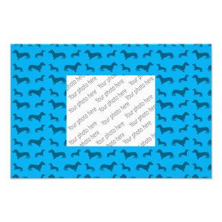 Modelo lindo del dachshund del azul de cielo foto