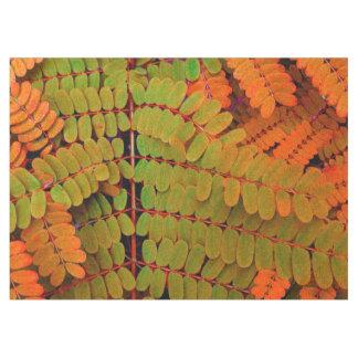 Modelo minúsculo de las hojas manteles