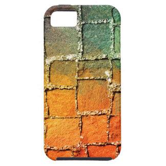 Modelo muy fresco y colorido para un fondo iPhone 5 fundas