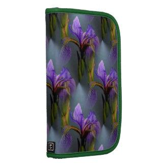 Modelo púrpura de la naturaleza de la flor del organizador