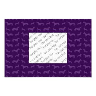 Modelo púrpura lindo del dachshund fotos