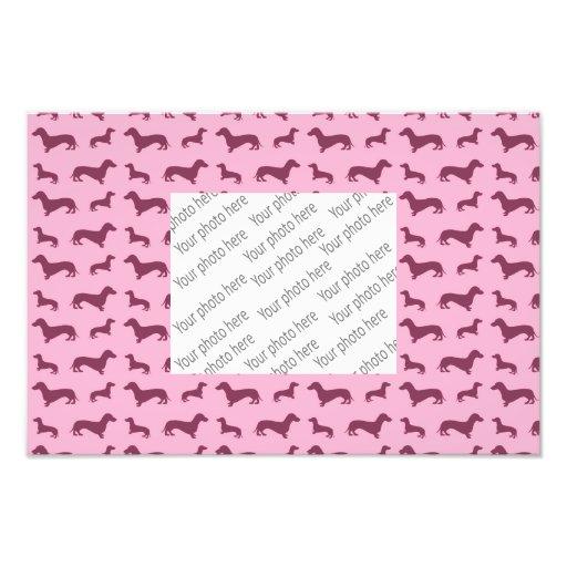 Modelo rosa claro lindo del dachshund fotografías