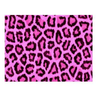 Modelo rosado del estampado leopardo postal