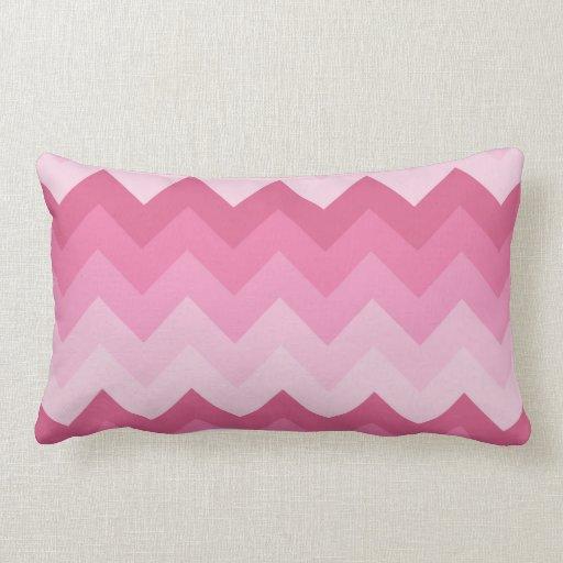 Modelo rosado del galón cojines