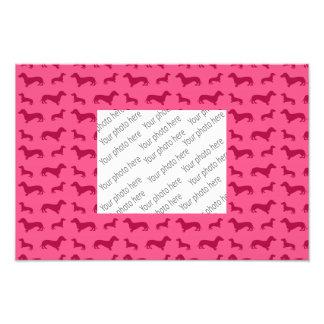 Modelo rosado lindo del dachshund arte fotográfico