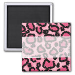 Modelo rosado y negro del estampado leopardo iman