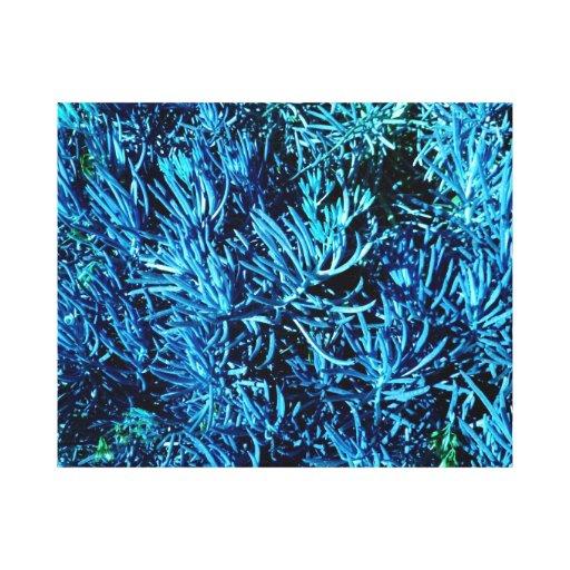 modelo suculento total del azul del extracto de lo impresiones en lienzo estiradas