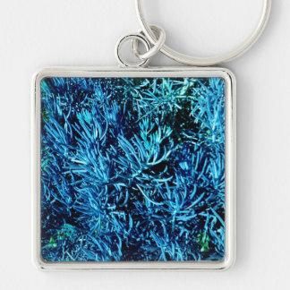 modelo suculento total del azul del extracto de lo llavero cuadrado plateado