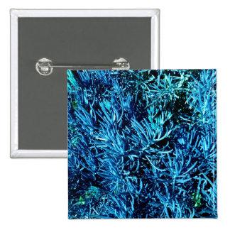 modelo suculento total del azul del extracto de lo pin cuadrada 5 cm