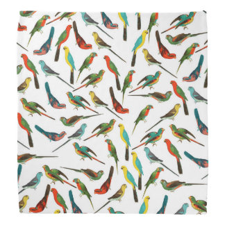 Modelo tropical colorido fresco de los pájaros de bandanas