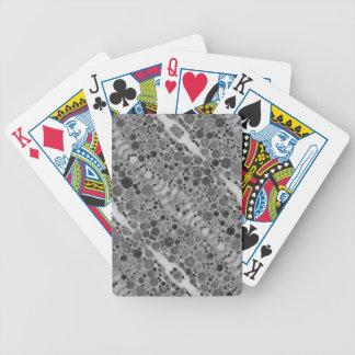 Modelo único de los extractos barajas de cartas
