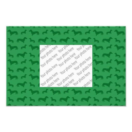 Modelo verde lindo del dachshund cojinete