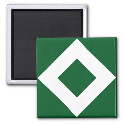 Modelo verde y blanco del diamante imanes