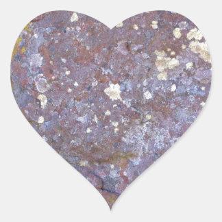 Modelos secados del musgo del liquen en el granito pegatina en forma de corazón