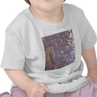 Modelos secados del musgo del liquen en el granito camiseta