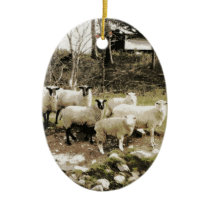 Models On The Farm Ceramic Ornament