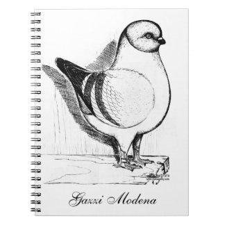 Modena Gazzi 1978 Notebook