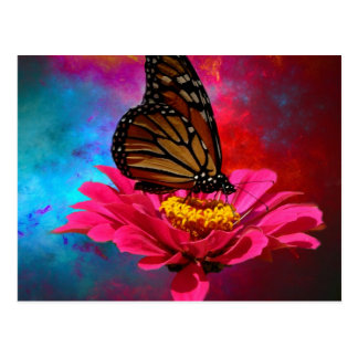 modern abstract gerber daisy butterfly post card