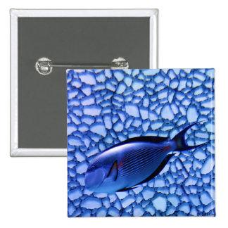 Modern Aquarium Pinback Button