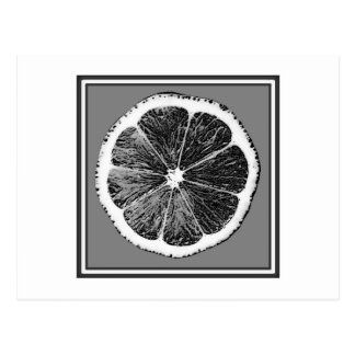 Modern  B&W Grey cut Grape Fruit Design Postcard