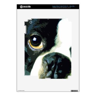 modern big Boston Terrier Skins For iPad 3