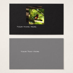 Modern Bird Business Card at Zazzle