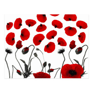 Modern Black and Red Flowers and Petals Postcard