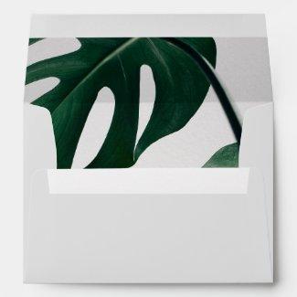 Modern Botanical Collection Envelope