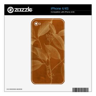 Modern Botany VI Decal For iPhone 4