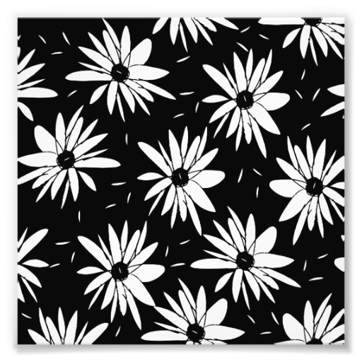 Modern chic floral black and white daisy pattern photo for Modern patterns black and white