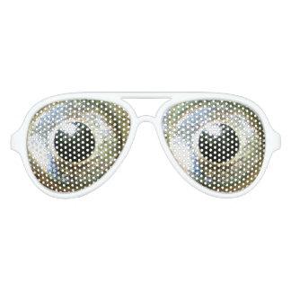 modern cool nerdy crazy eyes aviator sunglasses