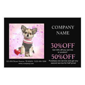 Modern cute animals pet service beauty salon flyer