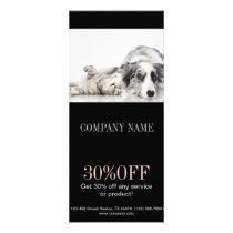 Modern cute animals pet service beauty salon rack card