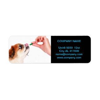 Modern cute animals pet service veterinary return address label