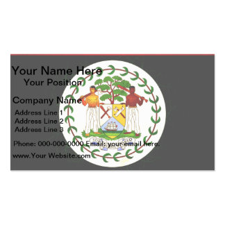Modern Edgy Belizean Flag Business Card