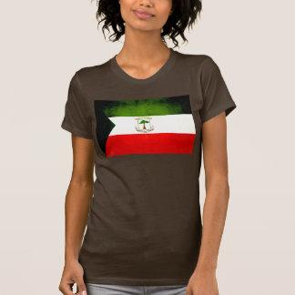 Modern Edgy Equatoguinean Flag T Shirts