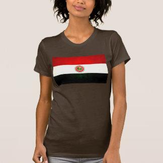 Modern Edgy Paraguayan Flag T-Shirt