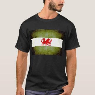 Modern Edgy Patagonian Flag T-Shirt