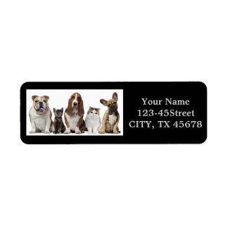 Modern funny cute pet lover label