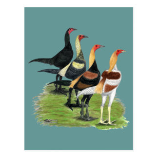 Modern Game Quartet Postcard