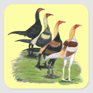 Modern Game Roosters Square Sticker