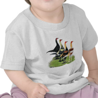 Modern Game Roosters T-shirt