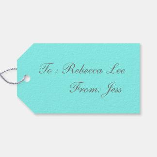 modern girly aqua  robin egg blue tiffany blue pack of gift tags