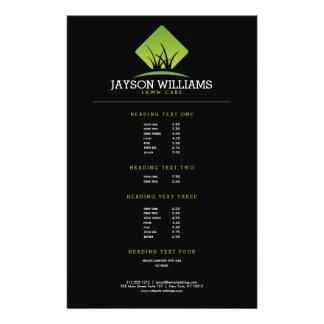 Modern Lawn Care/Landscaping Grass Logo II Flyer